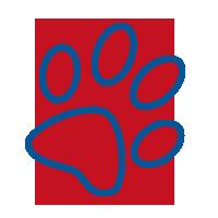 Doodle Scoopers's logo